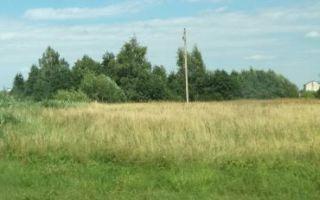Земельный пай как форма владения: особенности получения, что с ним делать и как переоформить землю в собственность?