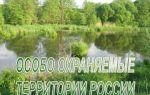 Земельный фонд – это особый природный и правовой объект
