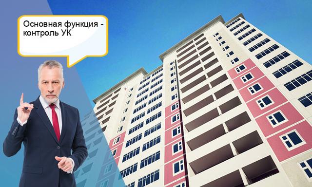 главный государственный жилищный инспектор российской федерации