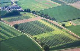 Инвентаризация земельных участков это процедура по контролю за распределением и использованием земли в РФ