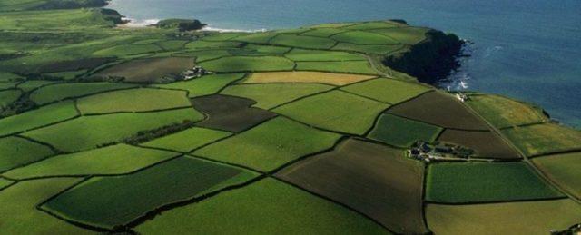 Что такое обременение земельного участка, каким образом регулируется законодательством, как узнать об обременении