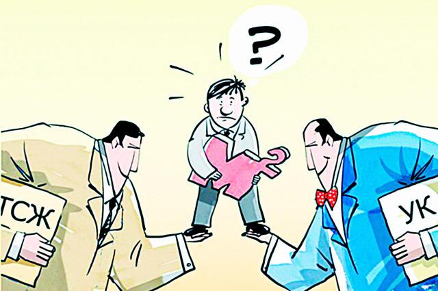 Чем отличается ТСЖ от управляющей компании, особенности каждой из форм управления и как выбрать, чтобы не совершить ошибку