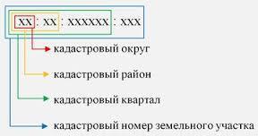 Кадастровый номер – это бессмысленная формальность или важный идентификатор: разбираемся