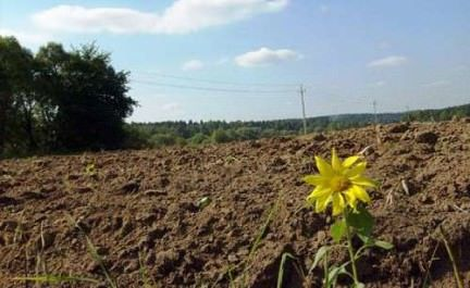 Многоконтурный земельный участок, что это землевладение собой представляет, его отличия и особенности по сравнению с обычным