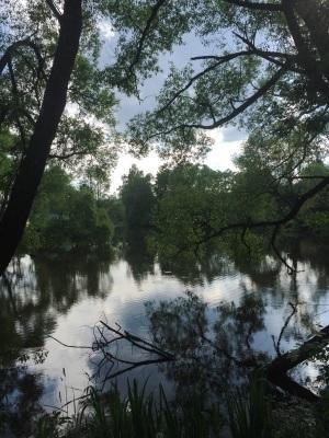Охрана водного фонда начинается сегодня