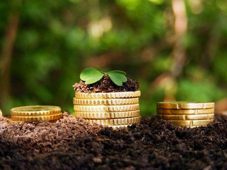 Как взять в аренду землю сельхозназначения, как правильно составить и заключить договор, как рассчитывается стоимость аренды