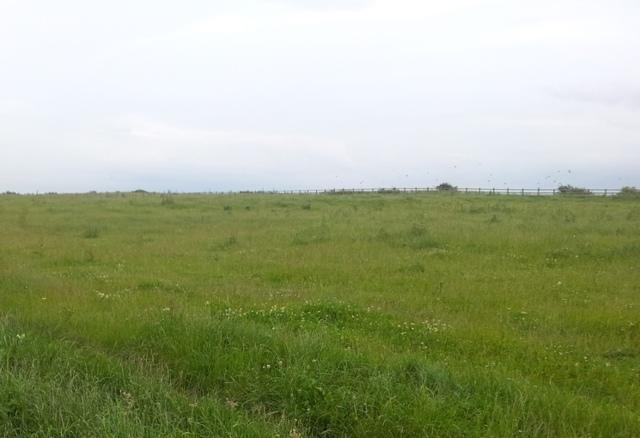 Нюансы бесплатного включения в очередь на земельный участок в Улан–Удэ